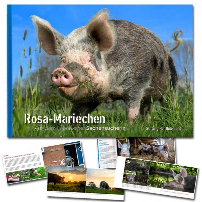 Rosa-Mariechen - Aus dem Leben einer Sachensucherin